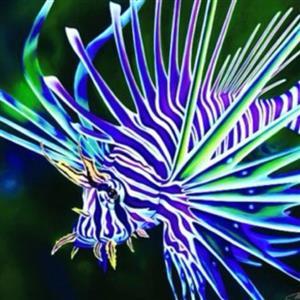 تصاویر دیدنی از دنیای زیر آب