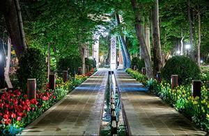 پیشنهادهای ویژه برای گردش شبانه در تهران