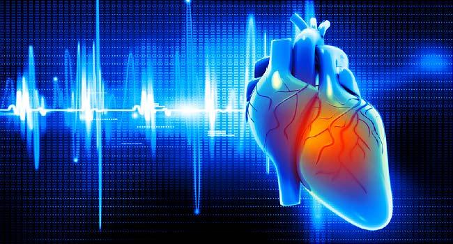 10 توصیه کلیدی برای پیشگیری از بیماریهای قلبی
