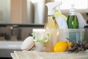 معرفی بهترین شویندههای غیرشیمیایی برای نظافت و خانه تکانی