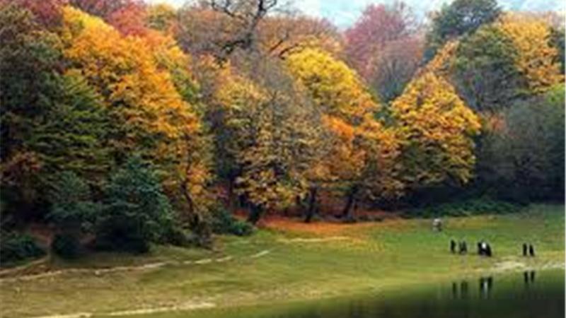 همه آنچه درباره پارک جنگلی گلستان باید بدانید