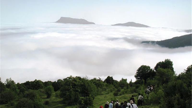 راهنمای کامل سفر  و ویژگیهای دیدنی جنگل ابر