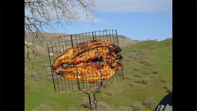 آشپزی/ دستور پخت ماهی کبابی
