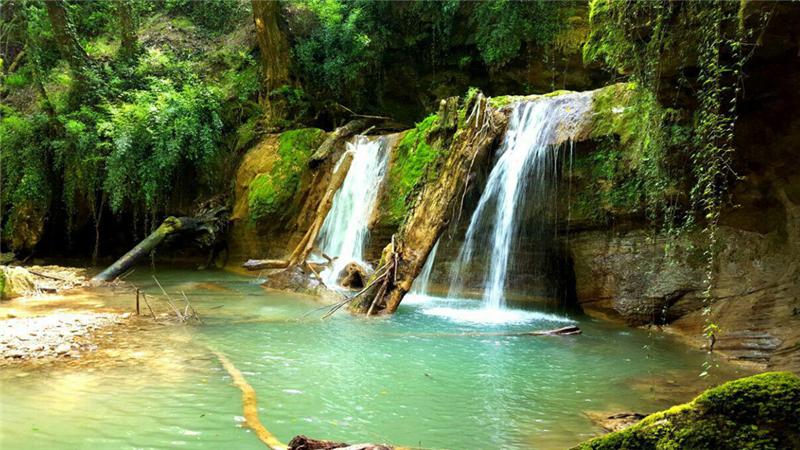 چرا و چگونه به جنگل لفور در استان مازندران برویم