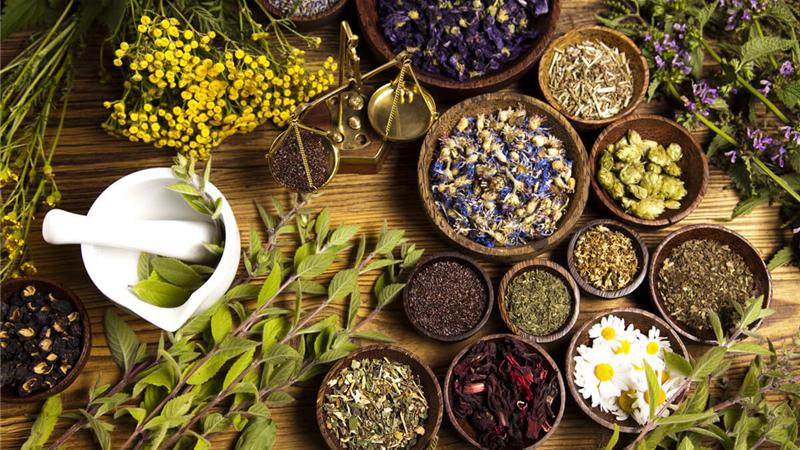 طب سنتی / معرفی کامل بهترین مسکنهای گیاهی  برای تسکین انواع دردها