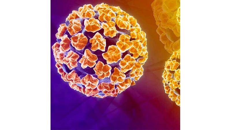 ویروس اچ پی وی چیست و آیا علایم و درمانی دارد