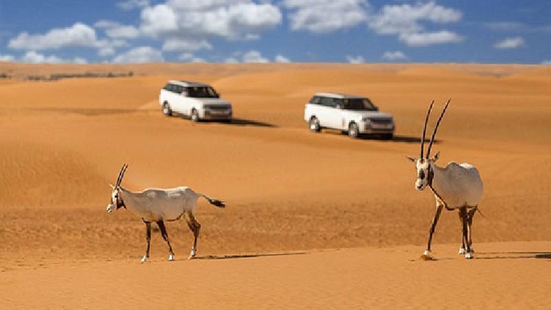 سفر به کویر مرنجاب ؛راهنمای کامل + جاهای دیدنی