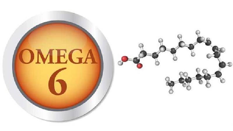 چه خوراکیهایی امگا-۶ دارند