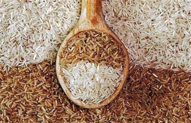 برنج قهوهای؛ از خاصیتها و تاثیر بر لاغری تا دستور پخت