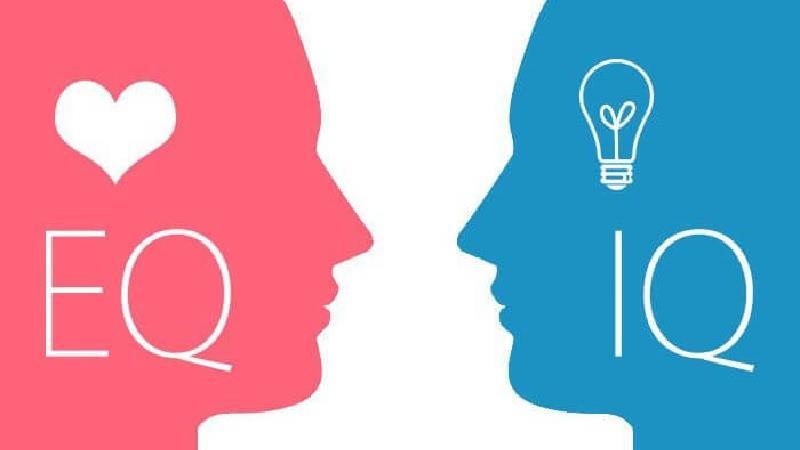 هوش هیجانی چیست و چه نقشی در موفقیت ما دارد