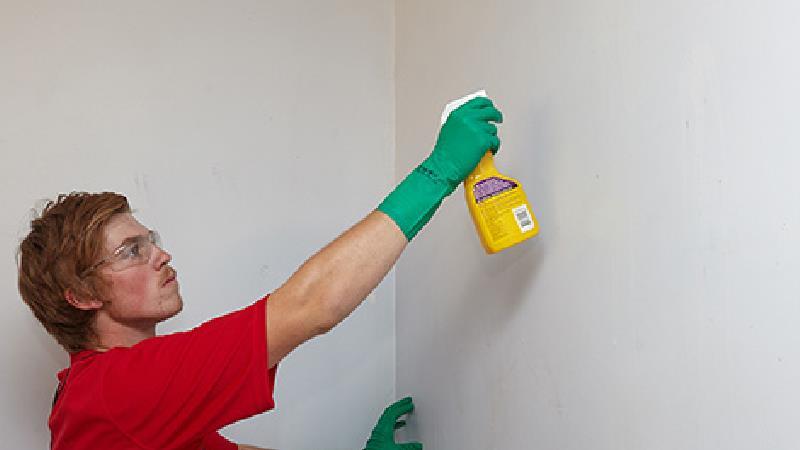 لکه روی دیوار را چه طور پاک و تمیز کنیم