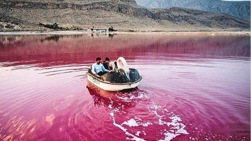دریاچه مهارلو کجا است و چرا رنگ آن صورتی است