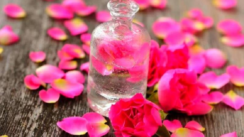 گلاب برای پوست چه فایدههایی دارد؛ از بهبود رنگ تا کاهش پف صورت