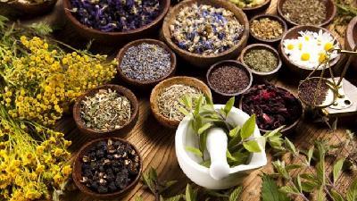 مفیدترین گیاهان دارویی برای زخم و عفونت معده، دیابت و کبد چرب