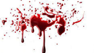 قتل مرموز زن میانسال میان شمشادها