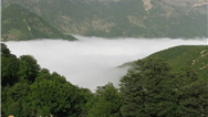 چرا، چگونه و چه فصلی به جنگل ابر سفر کنیم