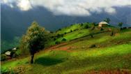 روستای آلاشت کجا است و چه جاهای دیدنی دارد