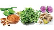 کنترل قند خون با گیاهان و روشهای طبیعی