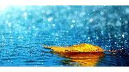 باران اسیدی چیست و چه خطراتی برای انسان دارد