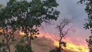 آتش در جنگل خسرج همچنان زبانه میكشد