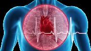 دلایل و علایم گرفتگی عروق قلب  چیست و چگونه می توان پیشگیری کرد