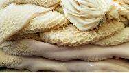 خواص سیرابی و شیردان چیست؛ از معده و کم خونی تا پوست و مو