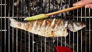 فیلم آموزش کباب کردن انواع ماهی با فر، اجاق گاز یا منقل