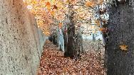 روستای احمدآباد مستوفی کجا است و چه دیدنی هایی دارد