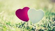 بهترین روش ها برای ابراز علاقه و عشق به همسر
