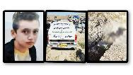 پسر نوجوان پسردایی 11 ساله اش را کشت